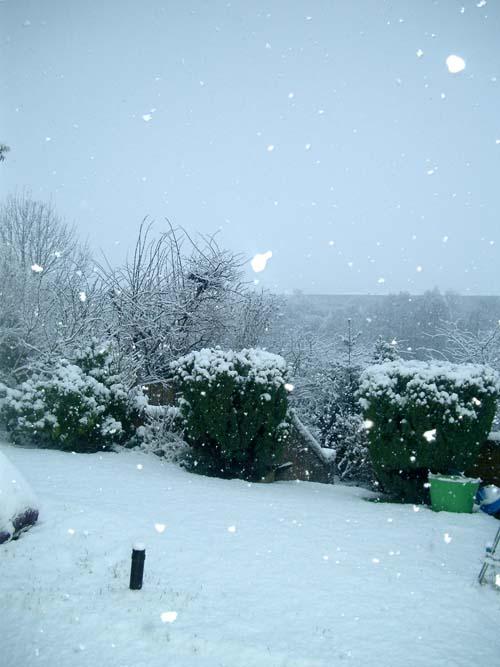 Snow0501