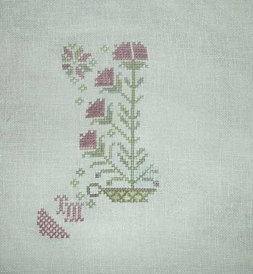 Carnationstocking